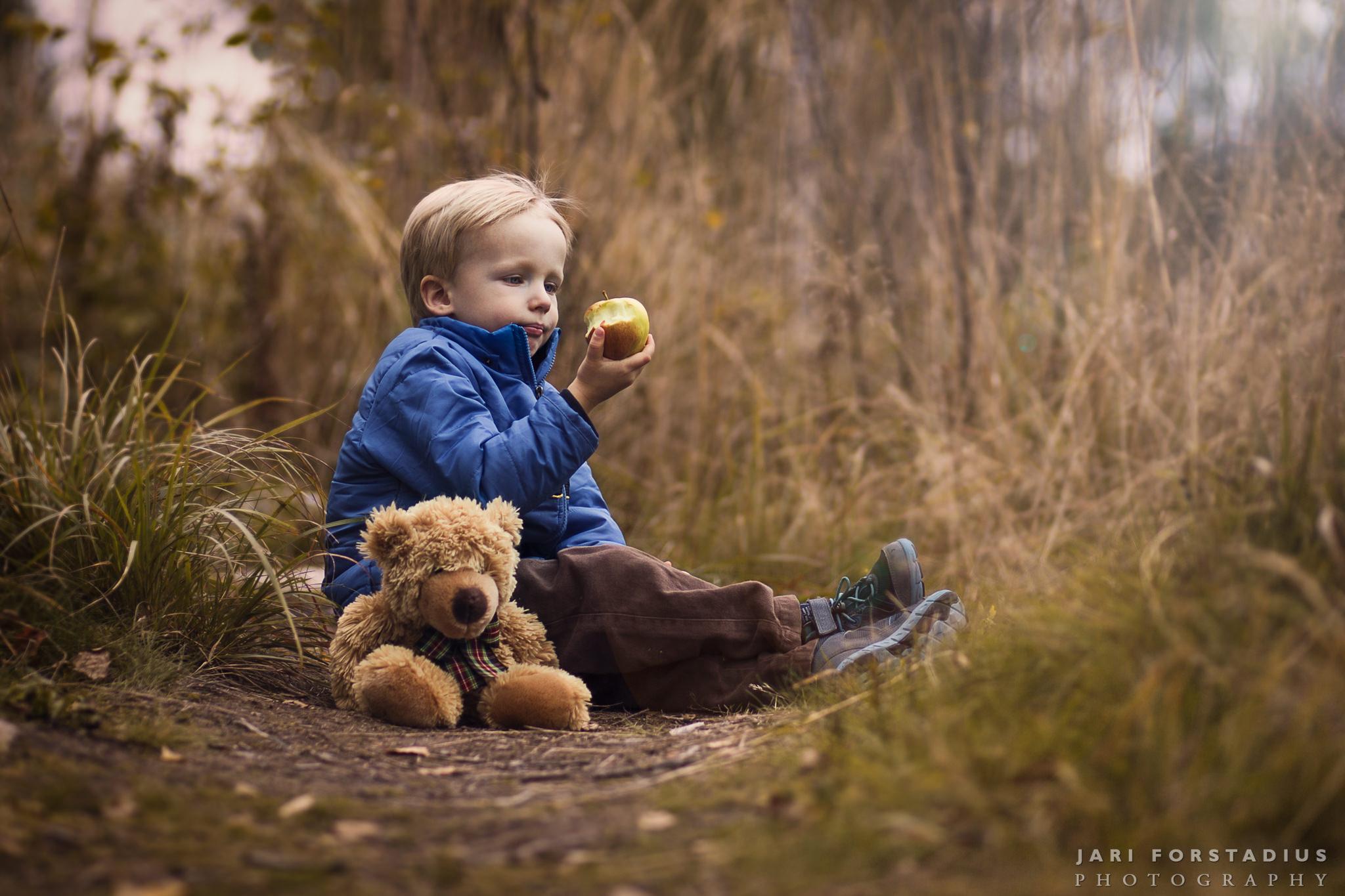Seasonal Photos – It Is Autumn